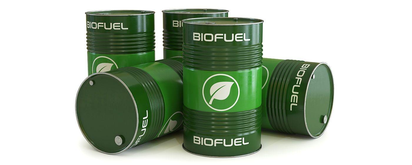 Bio-üzemanyag